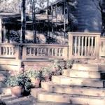 Gardens_Decks 15