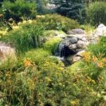 landscaping-16-scan-jpg
