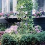 landscaping-3-scan-jpg