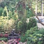 landscaping-5-scan-jpg