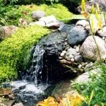 pond2-jpg