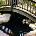pond_bridge-jpg