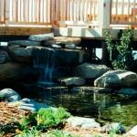 pond_deck-jpg