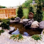 pond_deck_lanscape-jpg