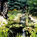 pond_waterwheel-jpg